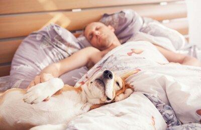 ישנים עם ידידינו הטובים