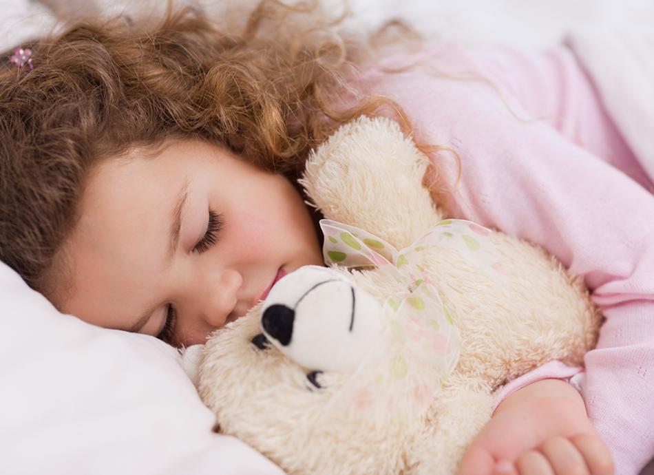 לילה טוב דובי דוב מאמר הולנדיה