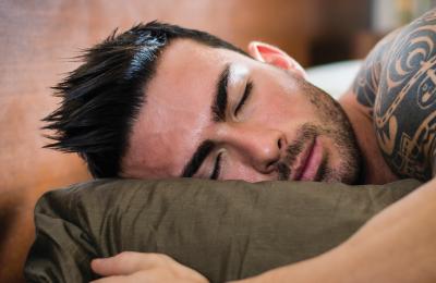 מאמר הולנדיה פורום שינה