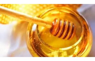 מה הקשר בין דבש דבורים לאיכות השינה שלכם הולנדיה
