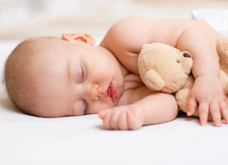 שינה לכל המשפחה מאמר הולנדיה